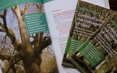 New Guidance on the Management of Tree Risk Published by the NTSG