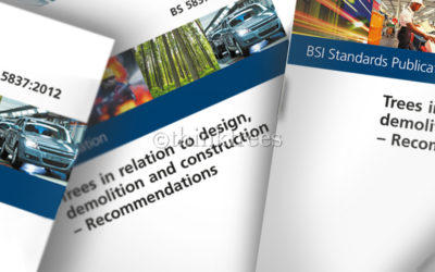 BS 5837:2012 – A Revised Standard for Trees and Construction