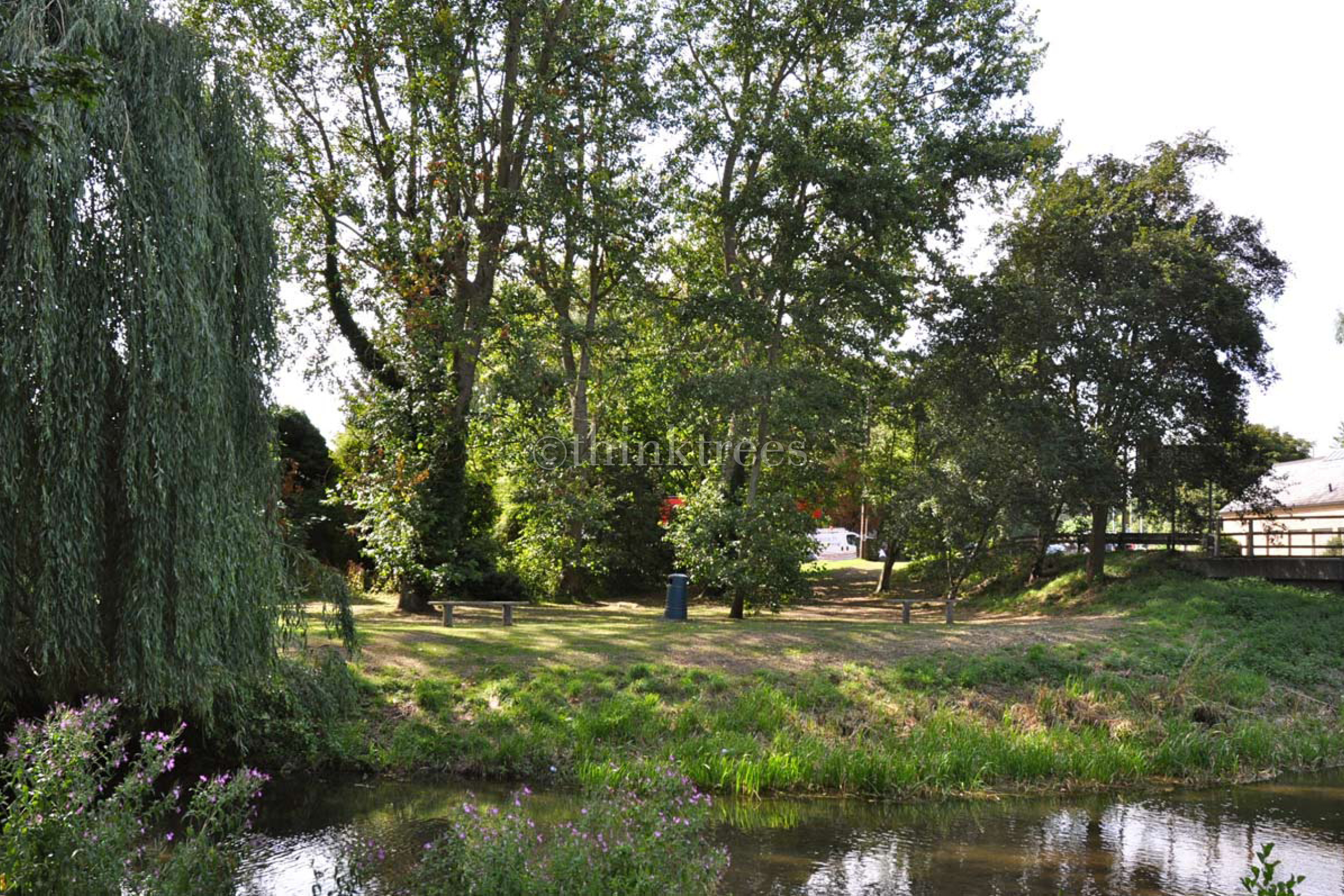 Public open space next to the river Rib in Standon, Herts